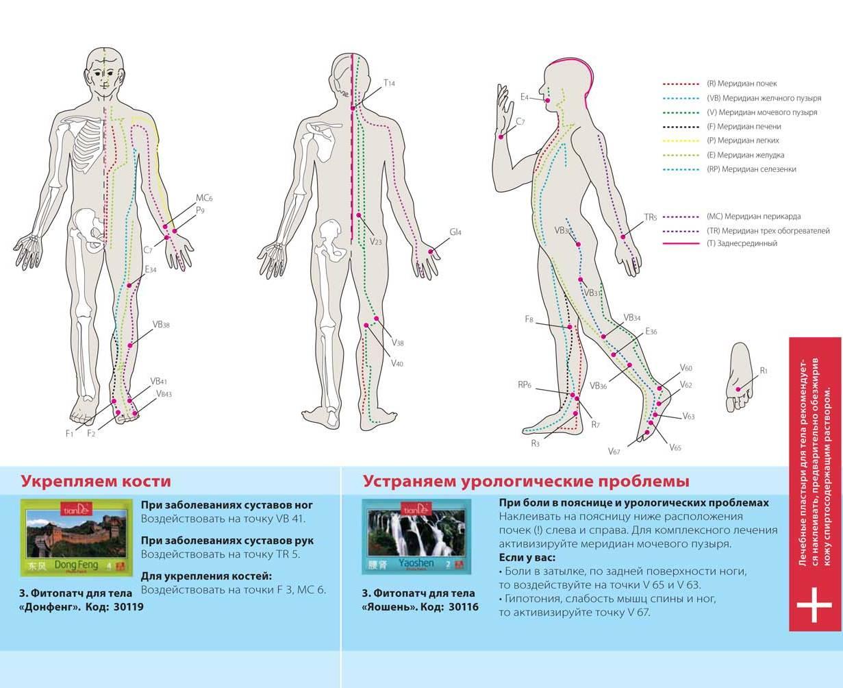 Заболевание печени схема лечения